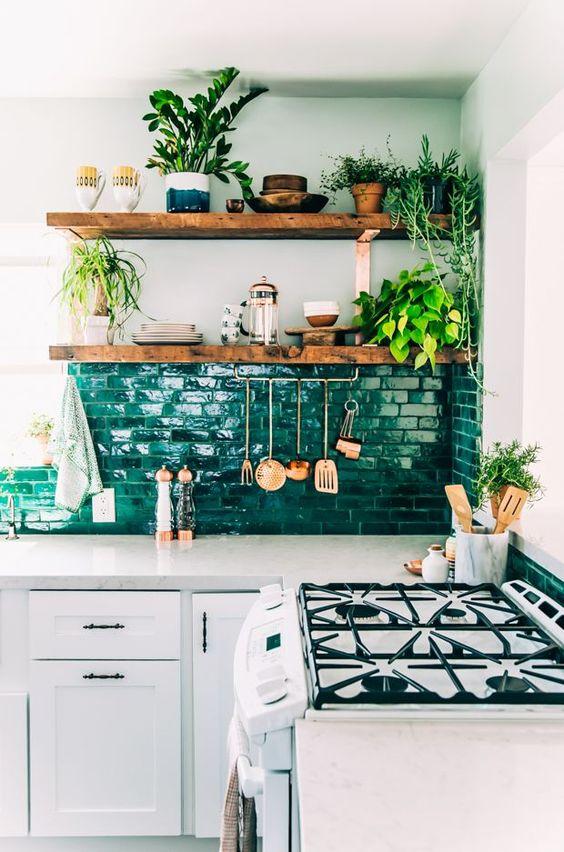 plantas em vasos na cozinha